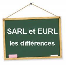 Le choix du statut d'une entreprise :l'EURL