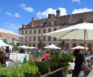 Pourquoi Fontainebleau est une ville attrayante